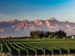 Mendoza y San Rafael