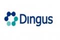 Dingus