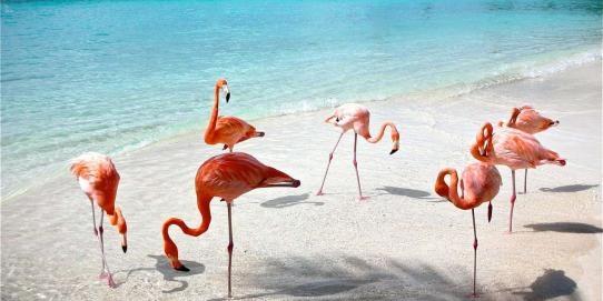 Yucatán 4 días