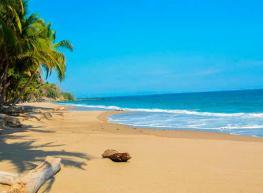 Biodiversidad & Playa