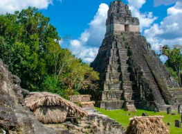 Guatemala Exótica