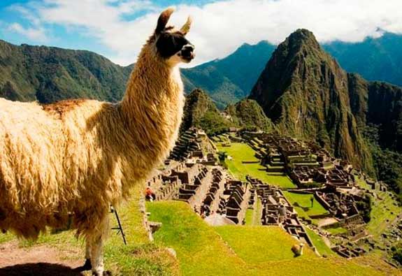 Perú Especial - 6 días / 5 noches 2020